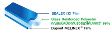 SEALEX DX Film
